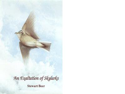 AN EXALTATION OF SKYLARKS